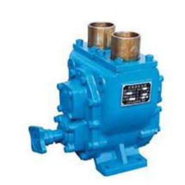 QT63-100-A Pompe ad ingranaggi